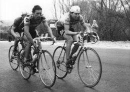7015 Photo Cyclisme  Moneyron Et Bazzo - Cyclisme