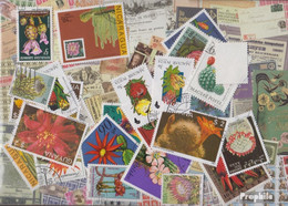 Motive Briefmarken-25 Verschiedene Kakteen Marken - Vegetales