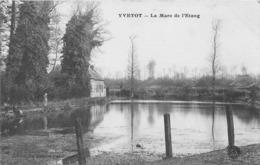 YVETOT - La Mare De L'Etang - Yvetot
