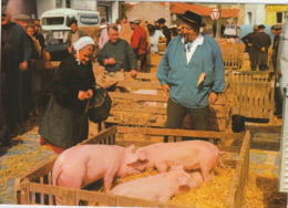 CHALLANS. - Le Marché Aux Cochons. Belle CPM - Challans