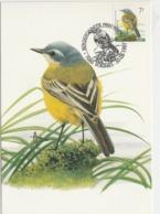 61. BUZIN.  LA BERGERONNETTE PRINTANIERE - 1985-.. Pájaros (Buzin)