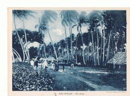 ILES DE WALLIS Un Village  Maxi Carte  240x180     Mx38 - Wallis And Futuna