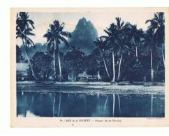 ILES DE LA SOCIETE  Haapiti  Ile Moorea Maxi Carte  240x180     Mx45 - Tahiti