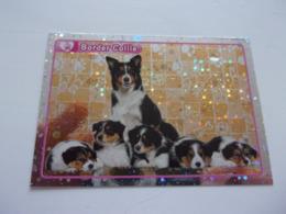 PANINI ANIMAL WORLD Animaux N°100 Chien Dog Hund Perro Kutya - Edition Française