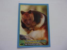 PANINI ANIMAL WORLD Animaux N°188 Kangourou Arboricole De Goodfellow Kangaroo Kânguru Canguro - Edition Française