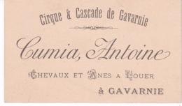 CARTE DE VISITE(ANE ET CHEVAL A LOUER) GAVARNIE - Cartes De Visite
