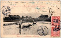 Carte De MENGTSZ Pour La France 1908 - Chine