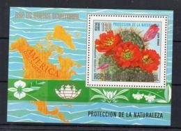 GUINEE-EQUATORIALE - EQUATORIAL GUINEA - B/F - M/S - FLOWERS - FLEURS - CACTUS - 1974 - - Guinée Equatoriale