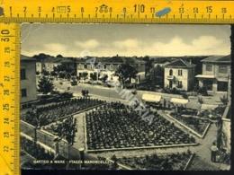 Forlì Gatteo Mare (piega) - Forlì