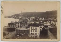 (Suisse) Cabinet Circa 1880 T. Richard à Männedorf . Vue De Wädenswil . Lac De Zürich . Hôtel Du Lac . Gare . - Antiche (ante 1900)
