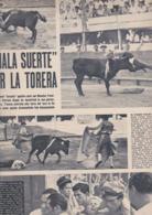 (pagine-pages)PATRICIA HAYES    Tempo1955/11. - Libri, Riviste, Fumetti