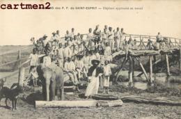 MISSION DES P.P. DU SAINT ESPRIT ELEPHANT APPRIVOISE AU TRAVAIL SCENE AFRIQUE - Missions