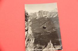 Belluno Cortina La Funivia 1953 + Timbro Targhetta Sui Tumori - Italia
