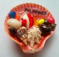 Shells - Animales & Fauna