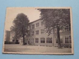 BORGERHOUT Instituut SINT-AGNES Religieuzen Ursulinen ( Thill ) Anno 1954 ( Zie / Voir Photo ) ! - Antwerpen