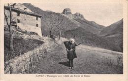 """0746 """"CANZO (CO) - PAESAGGIO CON VEDUTA DEI CORNI DI CANZO"""" ANIMATA. CART. ILL. ORIG. SPED. 1938 - Italia"""