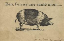 Illustrateur Ben ,t'en As Une Santé Mon ....  (COCHON) RV - Humour