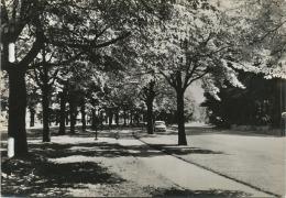 Woluwe-St-Pierre : L'avenue De Tervuren  :format 14.5 X 10.5 Cm ( 1963  CPA Carnet-Carnet Kaart See Scan) - Woluwe-St-Pierre - St-Pieters-Woluwe