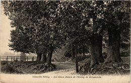 CPA Chaville-Velizy - Les Vieux Chenes De L'Étang De Brisemiche (353224) - Velizy
