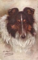 """Maud West Watson. Pet Dogs. The Collie"" Tuck Oilette PC # 9889 - Tuck, Raphael"