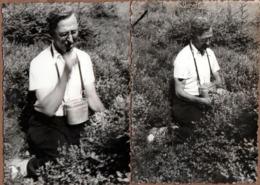 2 Photos Originales Cueilleur De Myrtilles à Genoux Ou En Mode Gourmand - Métiers