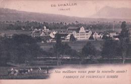 Sursee LU, Fabrique De Fourneaux (30.12.03) Pli D'angle - LU Lucerne