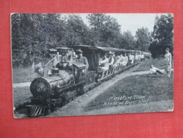 Miniature Train  House Of David Park  Michigan   Ref 3633 - Trains