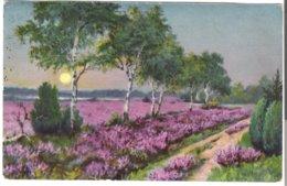 "Wenau - ""Delila"" -  Von 1925 (3657) - Botanik"