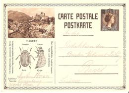 Carte Postale 106 35/75 Contre Le Doryphore (Vianden) - Interi Postali