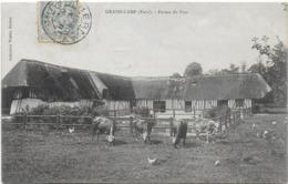 Grand-camp - Ferme Du Parc - Francia