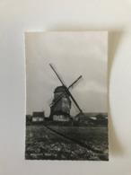 Bikschote - Molen Mill Muhle Moulin - Langemark-Poelkapelle