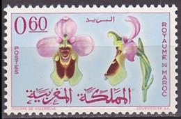 Timbre Neuf ** N° 496(Yvert) Maroc 1965 - Orchidée - Maroc (1956-...)