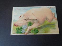 Cochon ( 83 )   Varken  Zwijn   Carte Gaufrée  Reliëf - Pigs