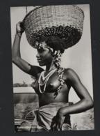 Nu Ethnique (Noirs Marrons / Femme / Panier ) Guyane Hollandaise SURINAME/SURINAM (1) Boslandbewoonster - Amérique