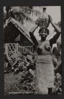 Nu Ethnique (Noirs Marrons / Femme Porteuse ) Guyane Hollandaise SURINAME/SURINAM (1) Bushnegroe - Amérique