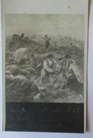 Serbien, Frauen Versorgen Verwundete, Serbische Patriotik (2169) - Weltkrieg 1914-18