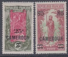 Cameroun N° 102 + 105 XX  Partie De Série : Les 2  Valeurs  Sans Charnière TB - Cameroun (1915-1959)
