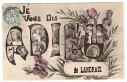 LANDRAIS (17) - Carte Fantaisie - JE VOUS DIS ADIEU DE LANDRAIS - FLEURS - Andere Gemeenten