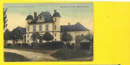 NESLES La VALLEE Colorisée Mairie Et Ecoles (Fleck) Val D'Oise (95) - Nesles-la-Vallée