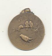 Médaille Sans Inscription - Exposition D'oiseaux - Ornithologie, Colibri,... (SL) - Other