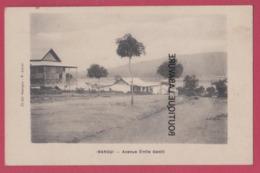 CENTRAFRIQUE République----BANGUI---Avenue Emile Gentil - Centrafricaine (République)