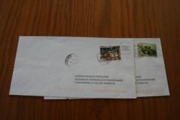 Polynésie Française: 2 Courriers - Lettres & Documents