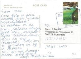 Maldives 2008 Male Red-crested Duck Viewcard - Maldiven (1965-...)