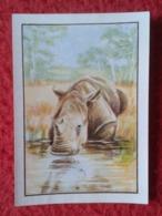 SPAIN ANTIGUO CROMO SMALL OLD COLLECTIBLE CARD RINOCERONTE RHINO RHINOCEROS RHINOS RHINOCEROSES DRINKING WATER.......VER - Unclassified