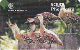 Antigua & Barbuda - C&W (Chip) - 5 Ducks - Chip Gem5 Red, 10 EC$, 2000, Used - Antigua En Barbuda