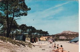 20. CALVI. LA PLAGE . ANIMATION. . ANNEE 1964 - Calvi