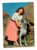 HUNDE - DOGGE, 1958 - Hunde