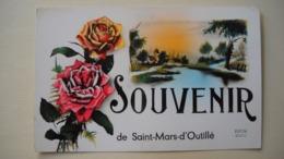 Saint-mars-d'outillé 72 . Carte Postale . Souvenir De Saint-mars-d'outillé . - Francia