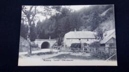 Bussang : Tunnel, Côté Alsacien / Carte Précurseur 1900 / Editions A. Breger - Bussang