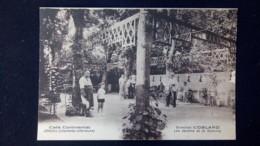 Jonzac - Café Continental, Direction COBLARD, Les Jardins Et Le Dancing - Jonzac